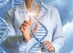 Бесплатная онлайн-консультация генетика!